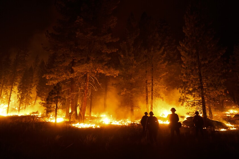 firefighter lights a backfire to stop the Caldor Fire from spreading