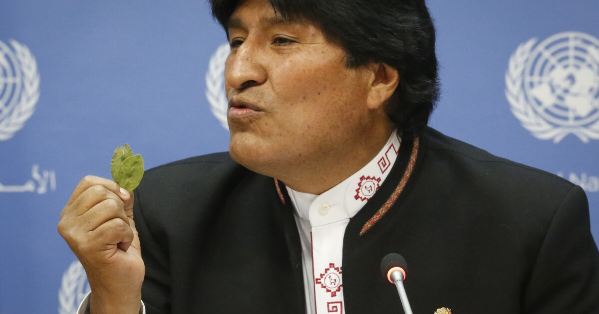 A year after disputed ballot, Bolivians return to polls, and ex-president Evo Morales looms large