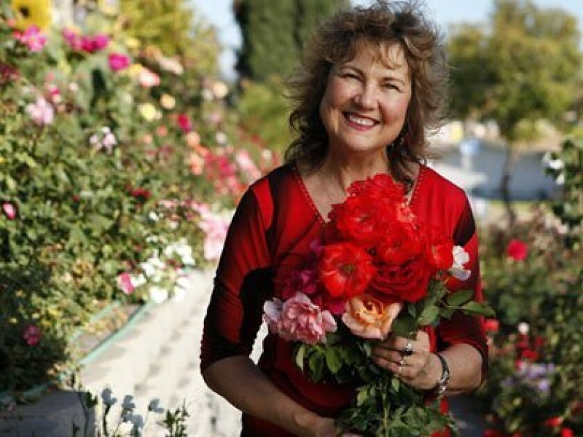 Ruth Tiffany is surrounded by roses at her San Carlos home.  Every part of her front, back and side yard are filled with an estimated 730 rosebushes.