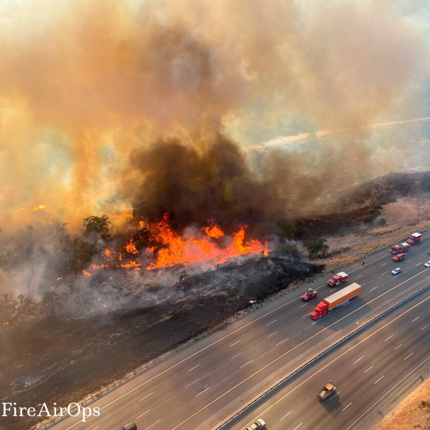 Wildfire by the side of a highway