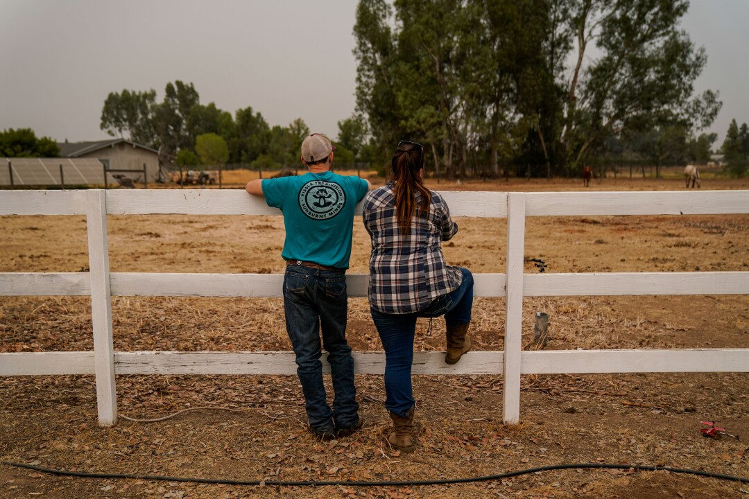 Jarad and Emily Jennings watch Apple and Ivy horses explore their winter home after being evacuated from Shaver Stables.