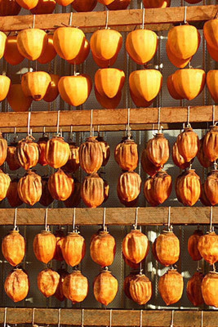Persimmons drying at Otow Orchard in Granite Bay, Calif.