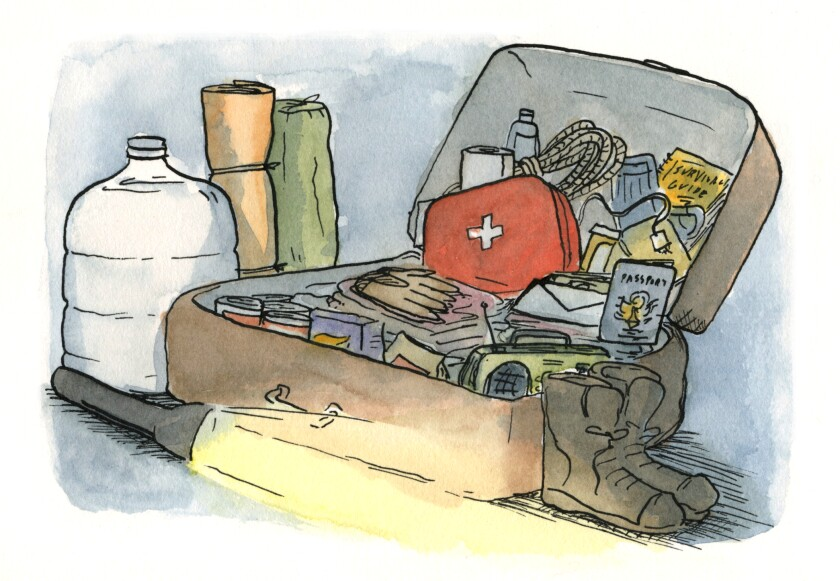 An illustration of a suitcase with emergency provisions.