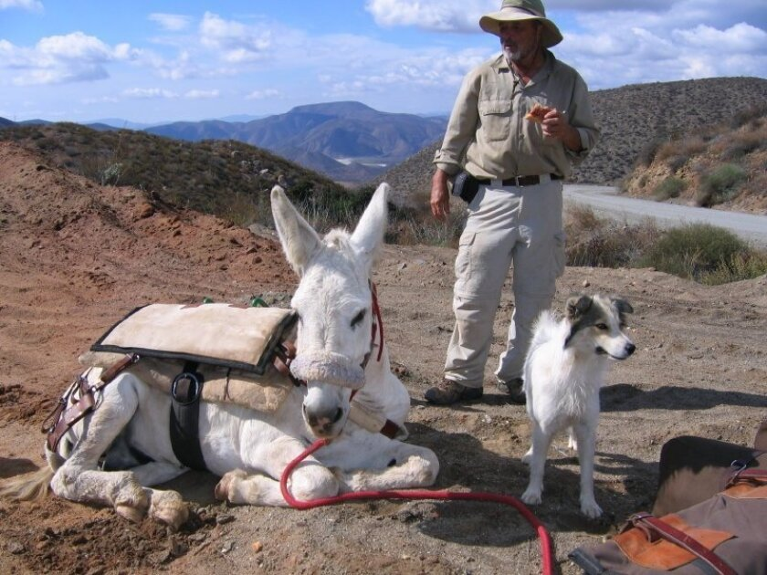 Mike Younghusband hiked the Baja peninsula from Tecate to Cabo San Lucas with his burro, Don-Kay, and a stray dog he named Solo.