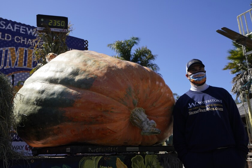 Travis Gienger poses next to his contest-winning pumpkin, which weighed in at 2,350 pounds.