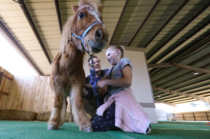 Kaylee Taylor, 9, uses a stethoscope to listen to the heart of Fable, a miniature horse, with the help of Justin Norris, education coordinator at the Helen Woodward Animal Center, during the one-day veterinarian camp in Rancho Santa Fe on Saturday.