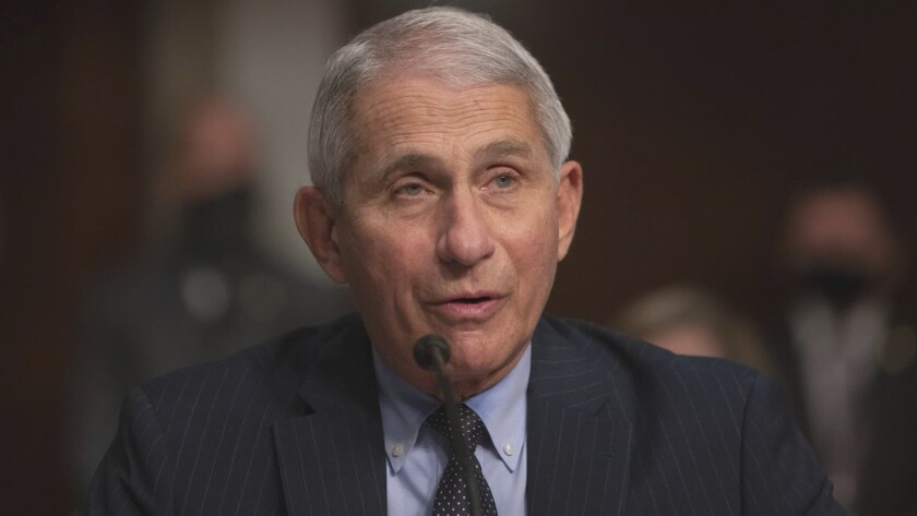 Dr. Anthony Fauci will be honored at theNational Conflict Resolution Center's Peacemaker Awards online Saturday, May 15.