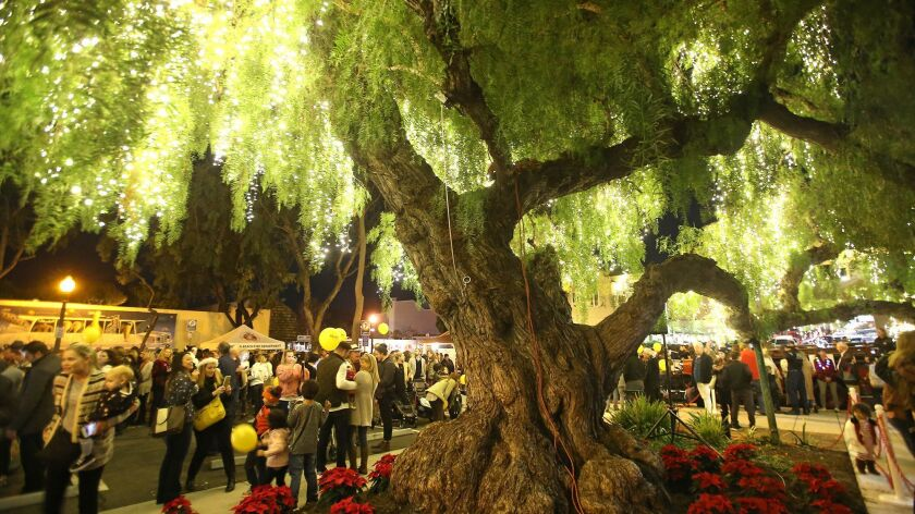 Lights adorn a pepper tree in the new center of the 2017 Hospitality Night, the Pepper Tree lot in d