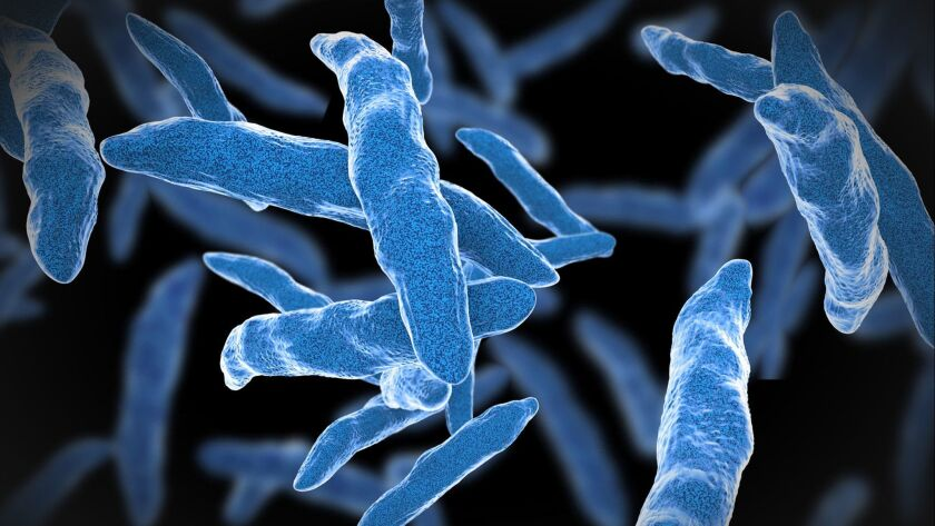 By targeting a key chemical process, researchers have found a new way to kills tuberculosis bacteria in mice. The method also enhances the effectiveness of two first-line TB drugs.