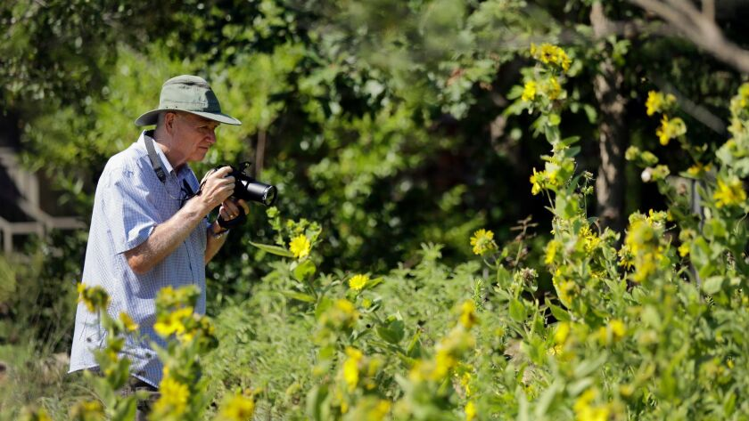 Travel Trip Lady Bird Wildflower Center, Austin, USA