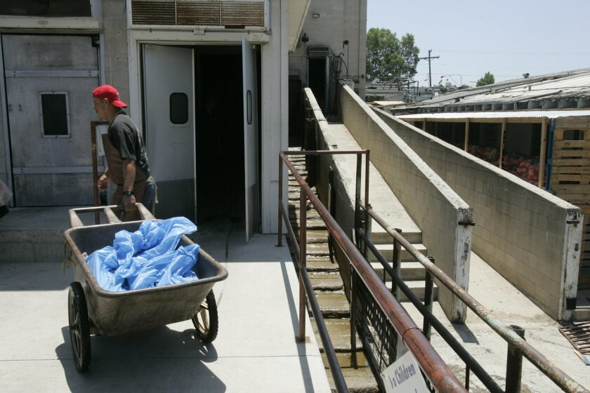Workers at Talone's slaughter house in Escondido in 2006.