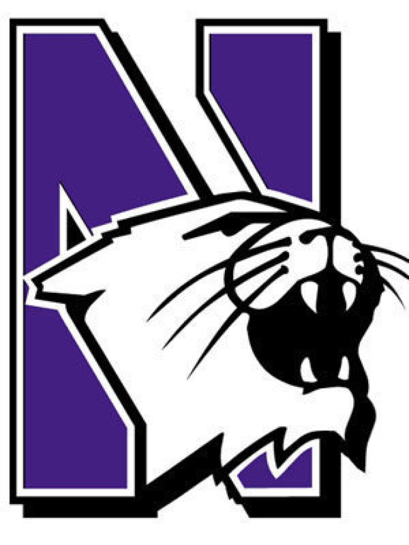 Image result for northwestern football logo