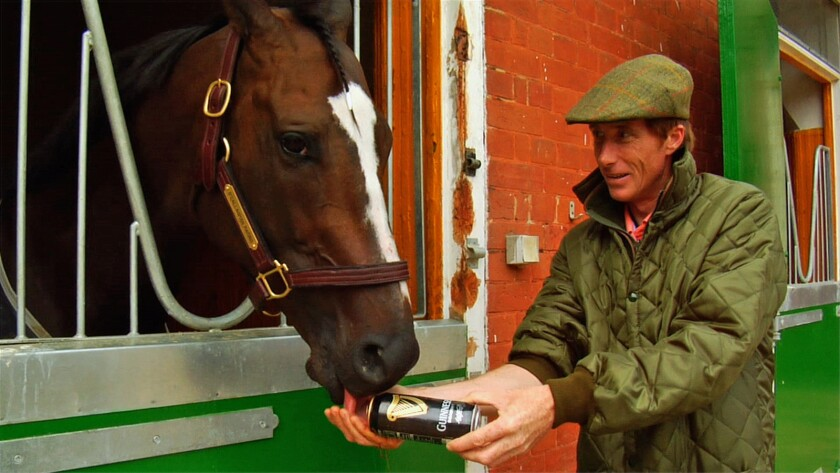 """Trainer Carl O'Callaghan gives Kinsale King a pint of Guinness beer in the documentary """"Chasing the Win."""""""