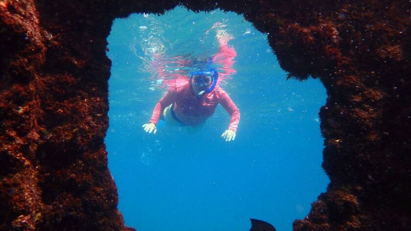 My wife and I loved snorkeling among the rusty ruins of a WWII Japanese supply ship. Doug Hansen pho