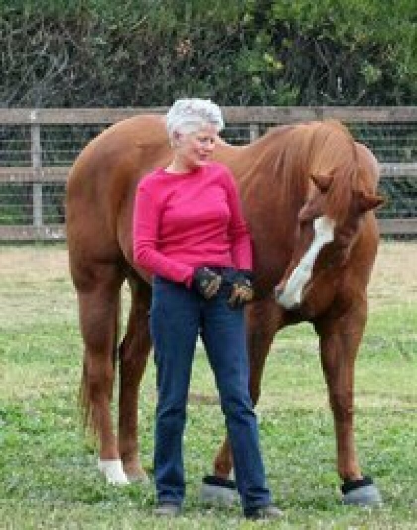 """Author Debra Saum with Romeo, the horse that inspired her book """"Horse As Teacher … The Path to Relationship"""""""