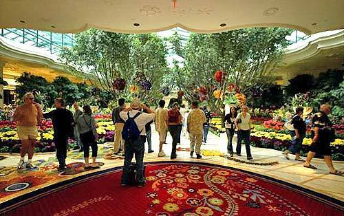 Explosion of flowers at the Wynn