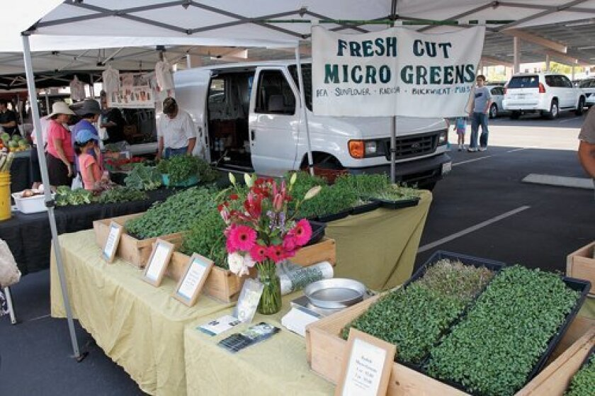 Fresh Cut Microgreens on sale at the Farmer's Market