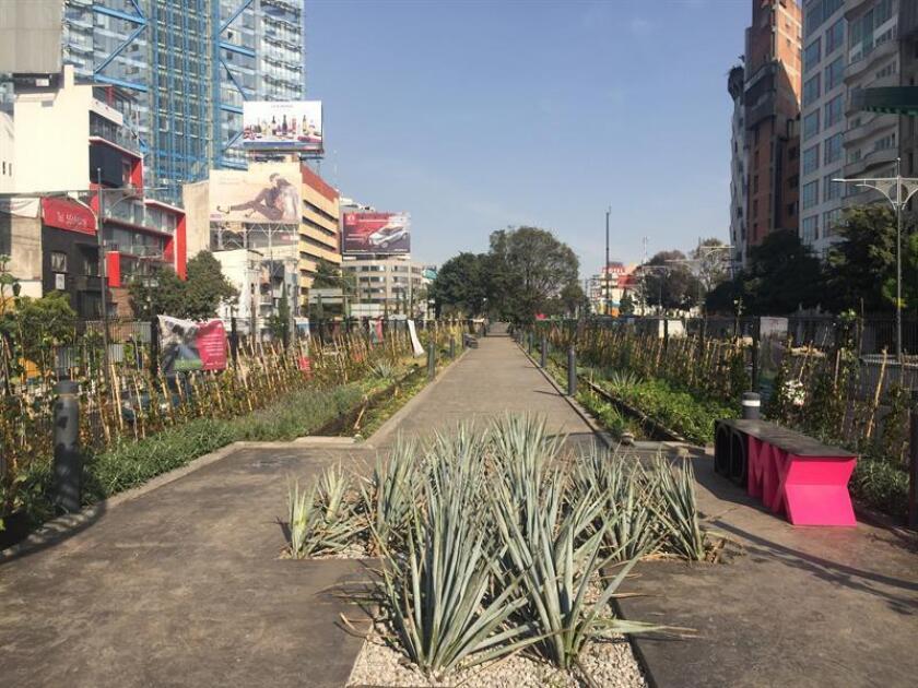 Fotografía del 20 de diciembre de 2017, cedida por la Asociación Civil Cuatro al Cubo hoy, viernes 2 de febrero de 2018, muestra un tramo del proyecto del Ecoducto en Ciudad de México (México). EFE/CUATRO AL CUBO/SOLO USO EDITORIAL/NO VENTAS