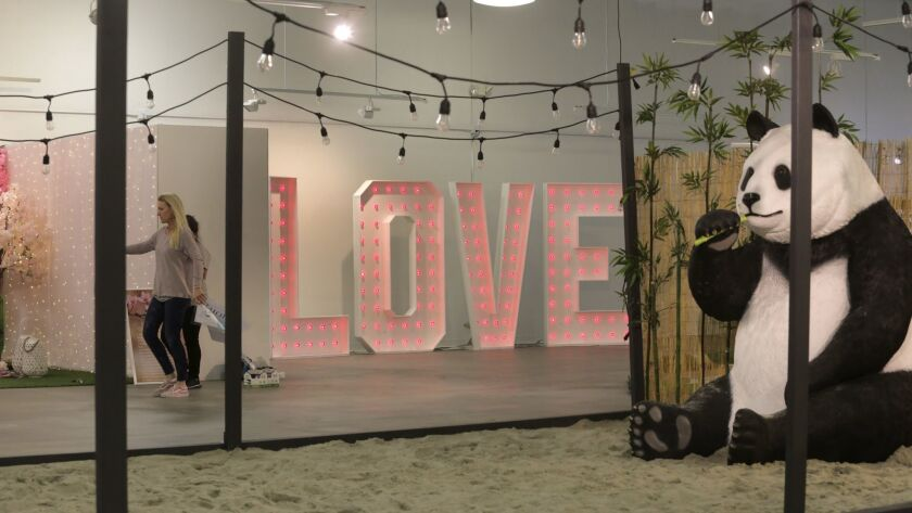 A giant panda sits in the sand zen garden in the center of the Museum of What Love Tour exhibit that opened on Valentine's Day in Encinitas.
