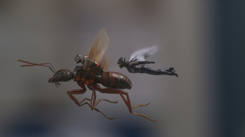 (L-R) - Ant-Man/Scott Lang (Paul Rudd) and The Wasp/Hope van Dyne (Evangeline Lilly) in a scene fro
