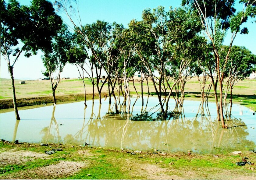 One Israeli method for water conservation is the building of limans, a type of earthen construction in which desert valleys are flooded and the rainwater is then collected naturally. Jewish National Fund