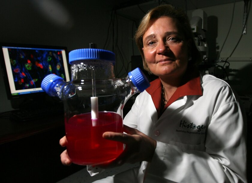 Gail Naughton, CEO of San Diego's Histogen, hods a miniature version of her company's system for growing embryonic-like stem cells, derived from skin cells. Histogen is testing its stem cell technology to regrow hair.