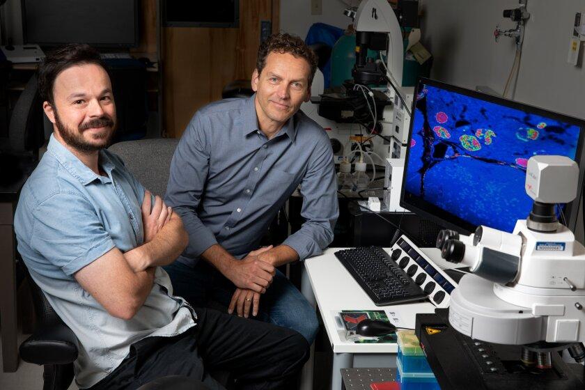 Rafael Arrojo e Drigo and Martin W. Hetzer of the Salk Institute