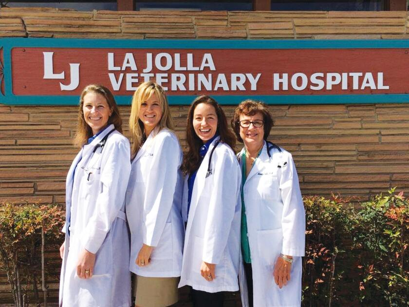 lj-vet-hospital-staff-11-3-16-jpg-20161102