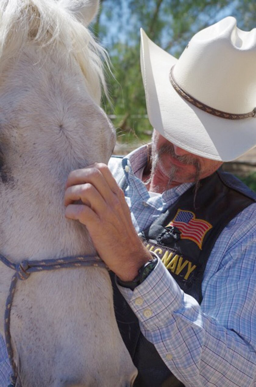 Veteran Jay enjoys a quiet moment with Stormy.