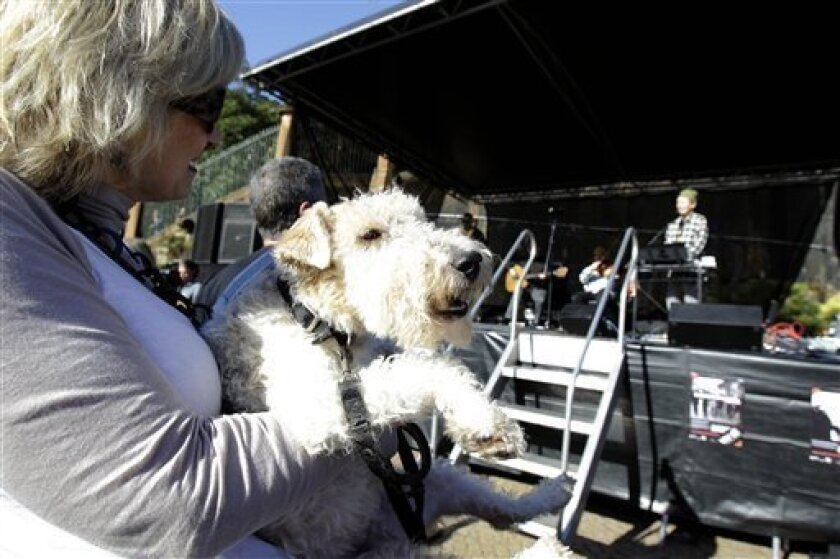 Daina Fletcher holds her 6-year-old terrier Lottie as dogs and their owners gather at the Sydney Opera House for a concert by performance artist Laurie Anderson in Sydney , Saturday, June 5, 2010. Anderson has composed a 20-minute work to create a shared experience for dogs and their owners. (AP Photo/Rick Rycroft)