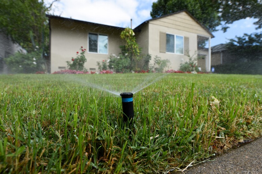 Sprinklers water the front lawn of a house in Encino.