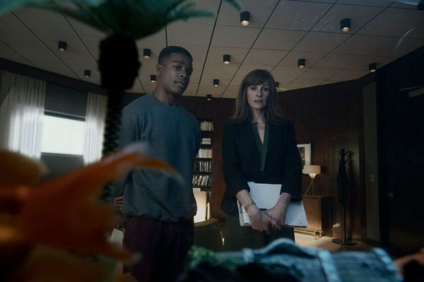 """Stephan James and Julia Roberts in a scene from """"Homecoming."""""""