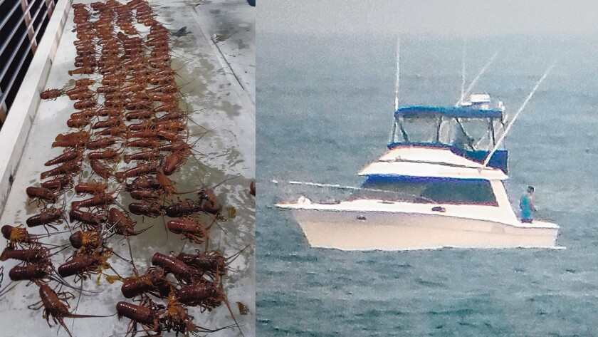 """CORRECTION: """"The vessel pictured is engaged in sportfishing, potentially inside the South La Jolla SMR, not lobster poaching. The lobsters in the other photo are confirmed confiscated lobster from a poaching bust in South La Jolla,"""" according to Zach Plopper, conservation firector at WILDCOAST."""