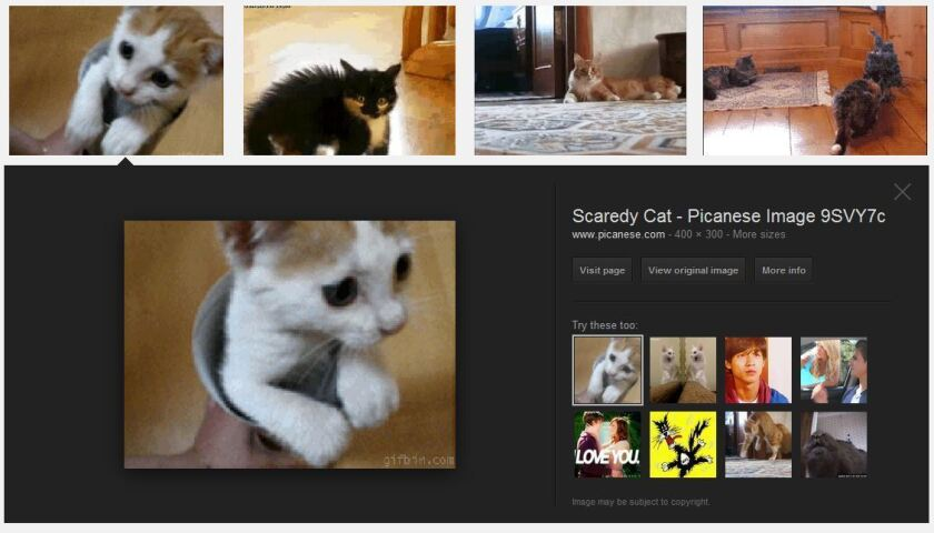 Google announced a new image search filter that lets users quickly look for animated GIFs.