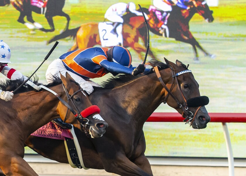 Raymundos Secret (right), with Flavien Prat aboard, holds off Lady Prancealot for victory in the John C. Mabee Stakes.