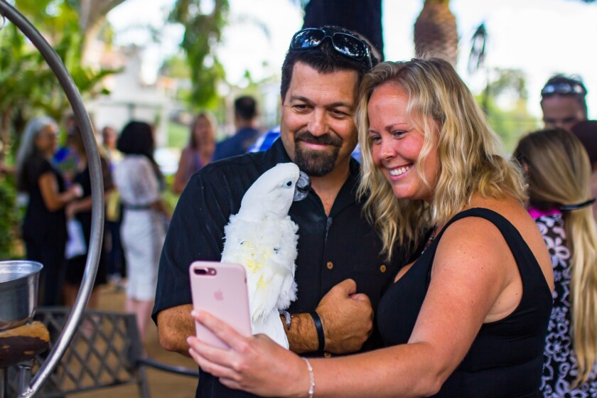 Justin and Rynell Nunez snap a selfie with Obi the cockatoo at the bird's 68th birthday party at Free Flight Exotic Bird Sanctuary in Del Mar. The Nunezes lived with Obi for five years before bringing him to Free Flight in 2015.