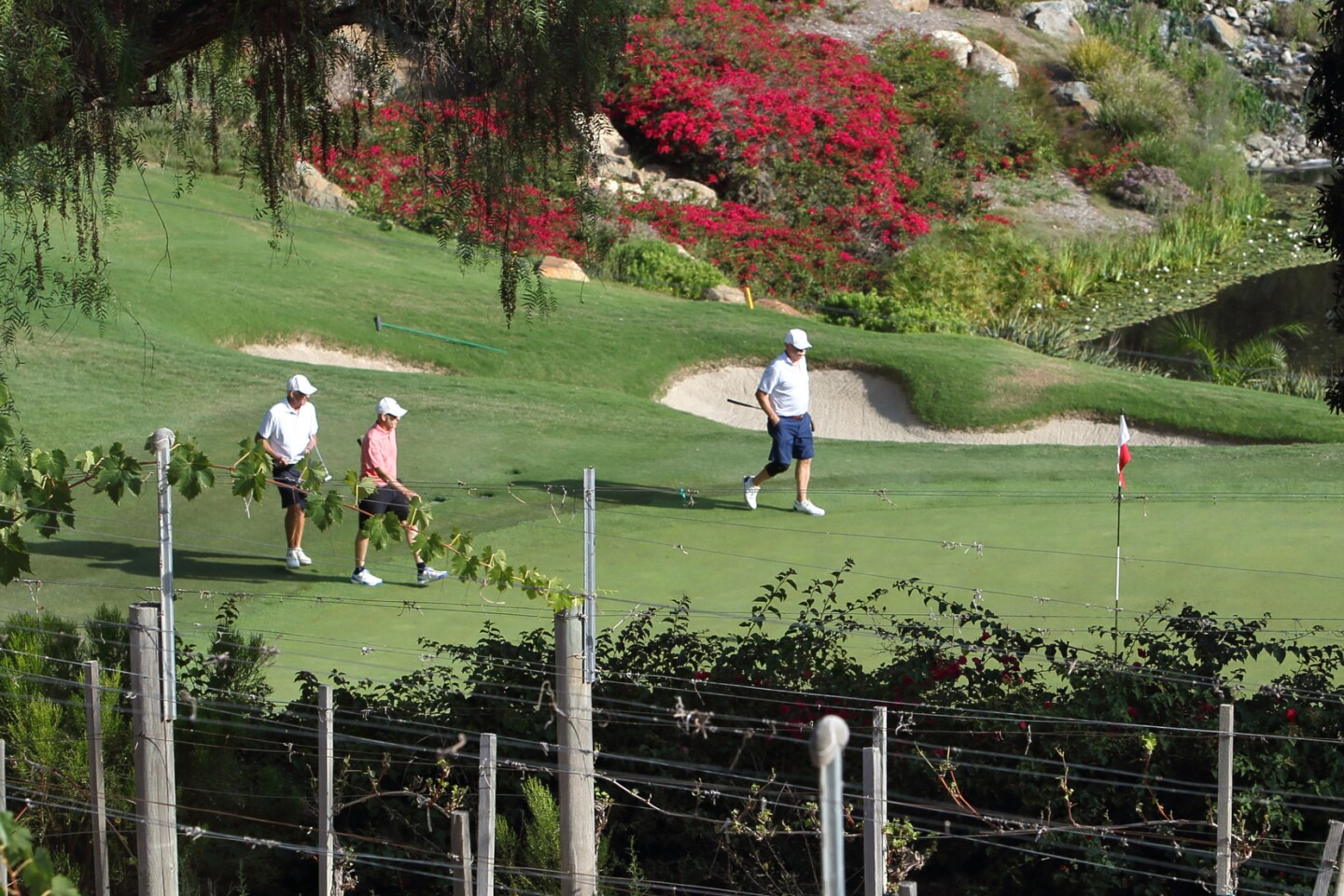 Players on the 18th green at The Bridges