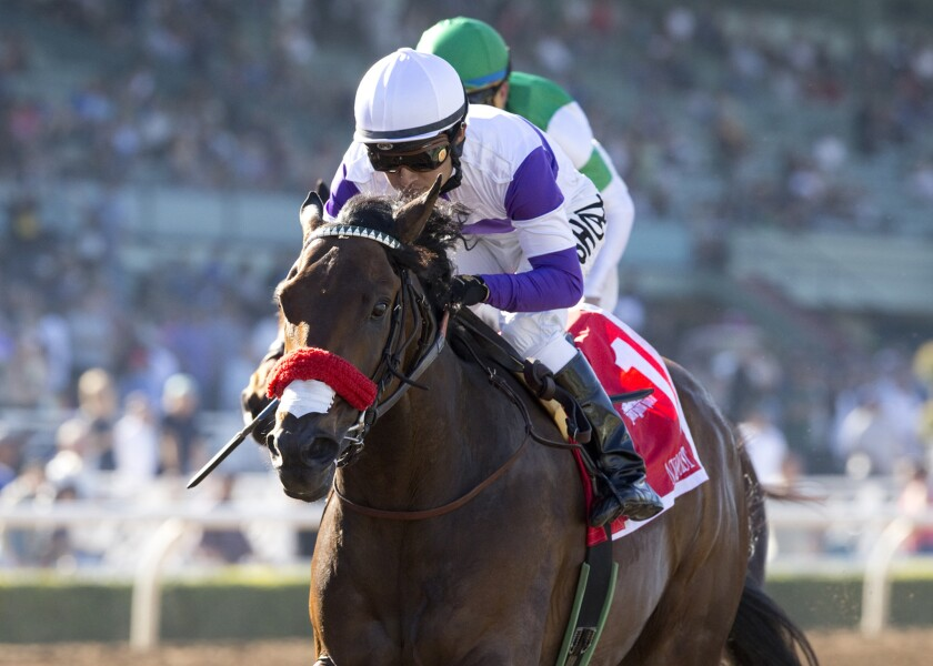 Nyquist and jockey Mario Gutierrez win the Grade II $200,000 San Vicente Stakes at Santa Anita Park on Feb. 15.