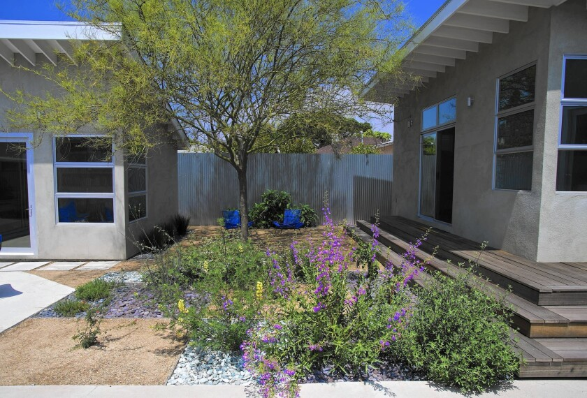 More California Gardeners Go Native Los Angeles Times