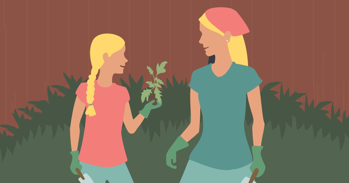 How a quarantine garden brought me closer to my tween daughter
