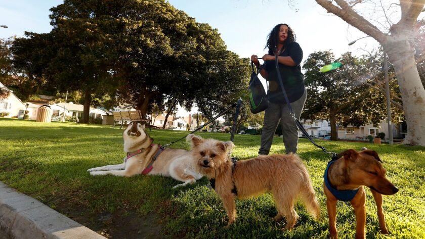 Una mujer se prepara para pasear con sus perros en View Park, Los Ángeles, el 8 de enero de 2016 (Los Angeles Times).
