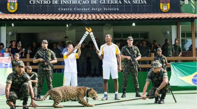 El jaguar 'juma' que participó en la ceremonia del paso de la antorcha olímpica...