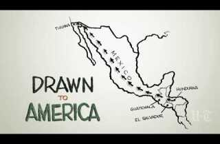 Drawn to America