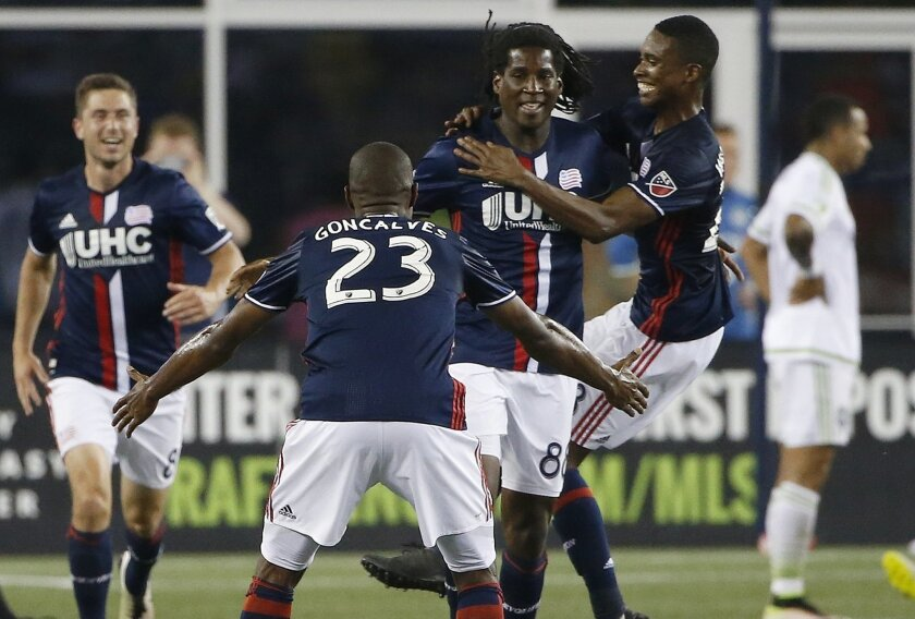 New England Revolution's Femi Hollinger-Janzen (88) celebrates his goal with teammates during the second half of an MLS soccer game against the Seattle Sounders Saturday, May 28, 2016, in Foxborough, Mass. The Revolution won 2-1. (AP Photo/Michael Dwyer)