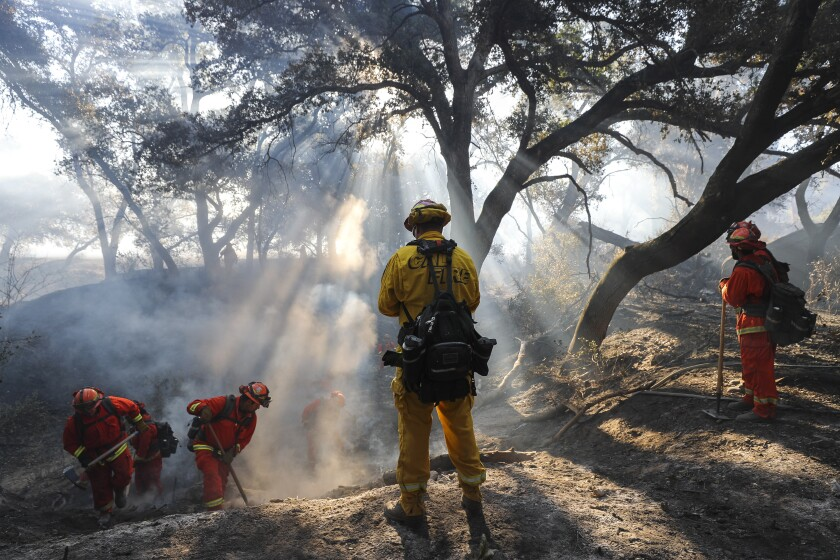 A Cal Fire fire captain, center, watches as a crew of inmates from the La Cima Fire Camp put out hot spots left from Friday's brushfire in a dry creek bed next to Littlepage Road on Saturday in Ramona.