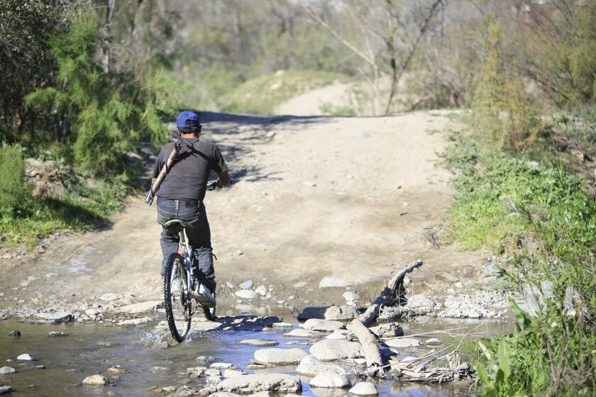 A scene last week at Tijuana's Alamar Creek, a riparian corridor in the midst of urban development that has been the target of preservation efforts.