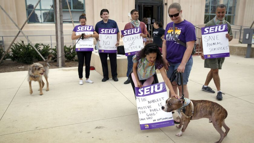 County Animal Services employees met outside of the County Administration Building in August to protest a proposal to consider outsourcing animal services. Service Employees International Union Local 221, the group that represents county workers, recently left a labor coalition.