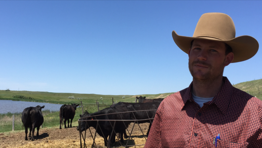 North Dakota ranch hand Jared Hatter spotted M56 spooking his father-in-law's cattle.