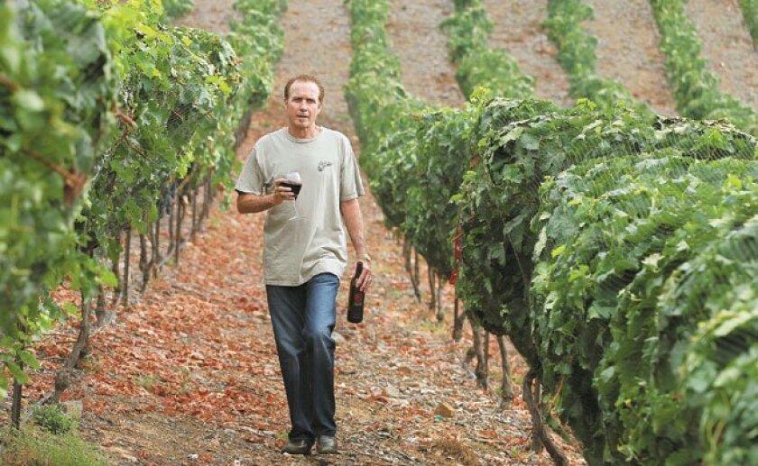 San Marcos-based winemaker Ed Kruger, in his Sunshine Mountain vineyards.