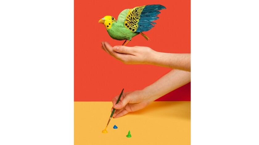 """""""In Michigan it is illegal to paint sparrows with the intention of selling them as parakeets."""""""